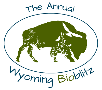 """The Annual Wyoming BioBlitz"" Bison Symbol"